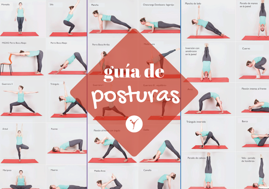 Guía de posturas - infográficos - - Asociación de Instructores de ...