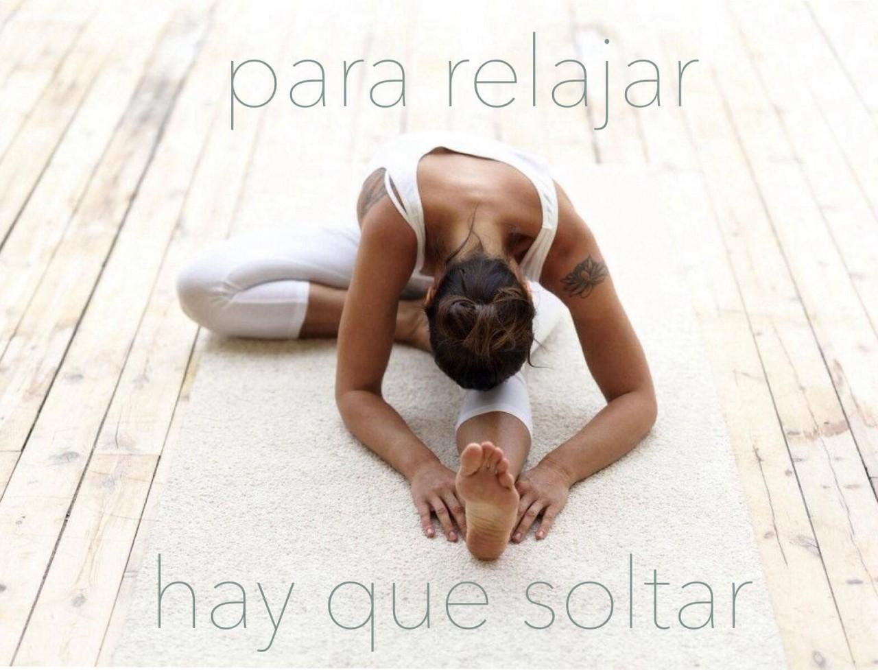 6 Frases que te delatan como YOGUI - Asociación de Instructores de Yoga  Latinoamérica