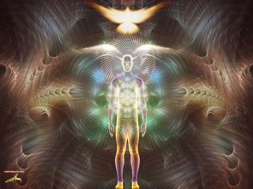 Somos creadores de la realidad que vivimos.