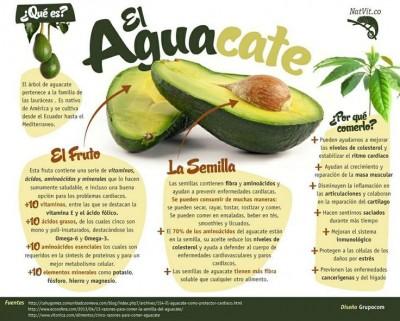 b2ap3_thumbnail_aguacate.jpg