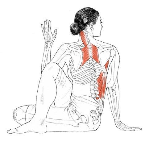 Duele la espalda la parte inferior como curar