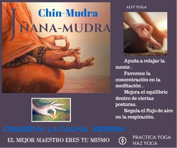 CHIN MUDRA.jpg