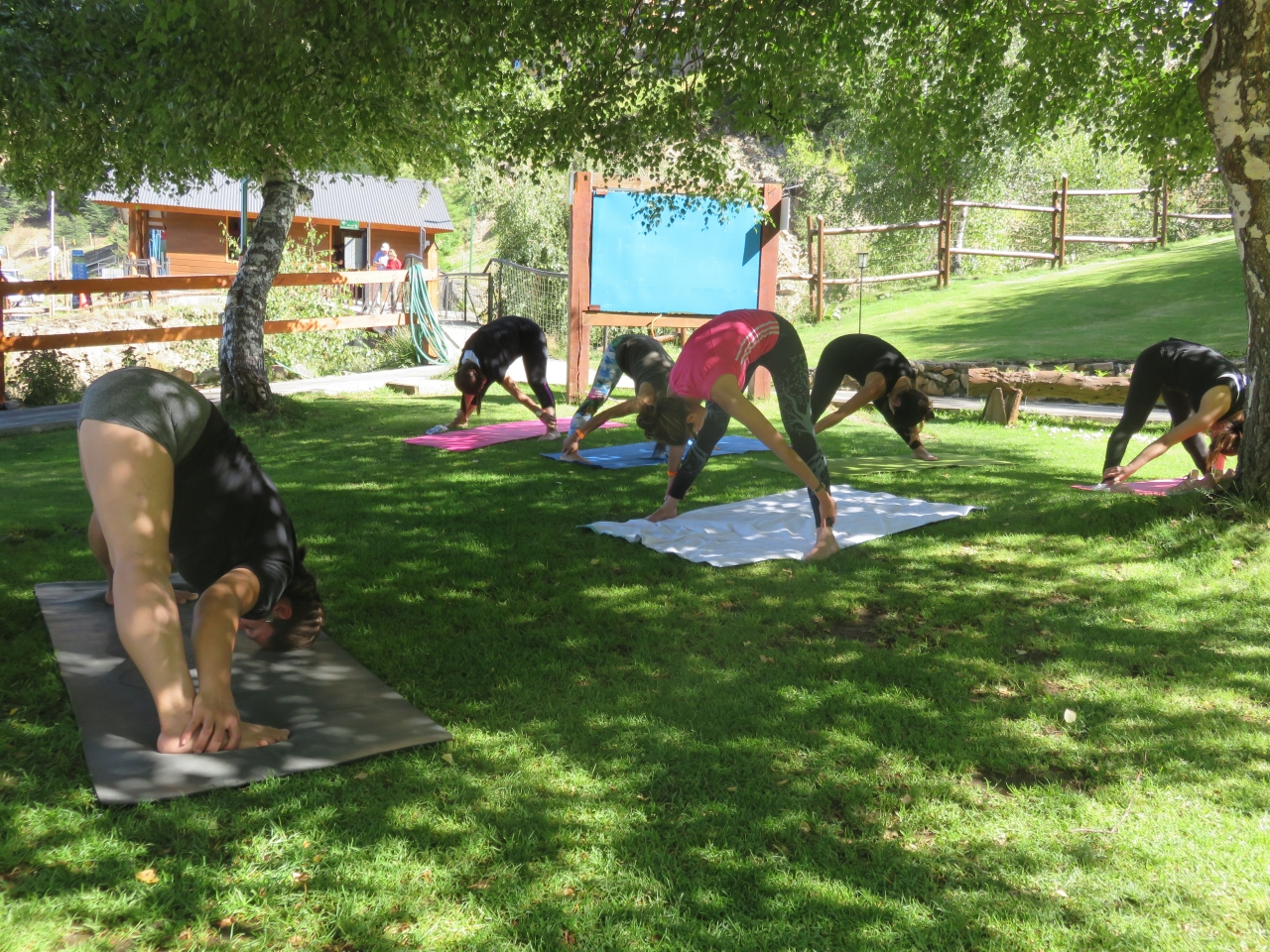 Certificación de nuevos Instructor@s de Yoga 14-02-2020